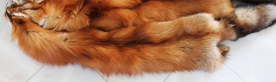 130cm Red Fox Skin (by Skazka Furs)