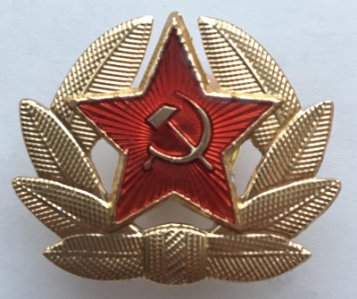 Red Army soldier Insignia Metal Pin